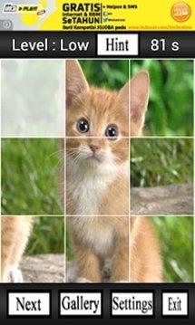 Cute Animals Puzzle