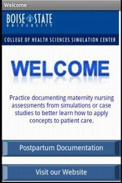 Postpartum Nursing Document