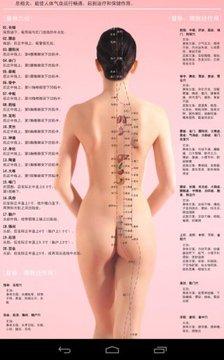 人体常用穴位高清图