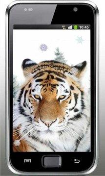 Tiger Wild HD live wallpaper