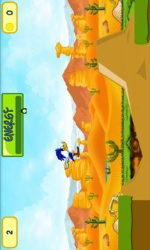 Super Bird Runner