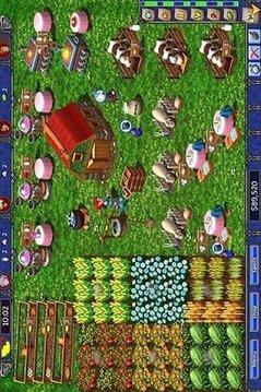 Hay Happy Day Farm