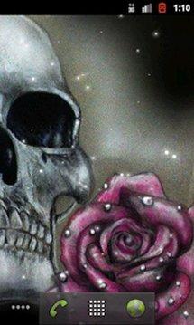 Skull&Rose1 livewallpaper free