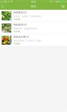 邢燕子有机蔬菜