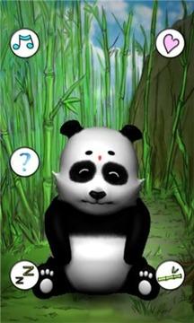 扭扭小熊猫