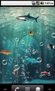 Fish highway Live Wallpaper