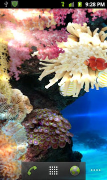 Tropical Coral Reef Watery LWP