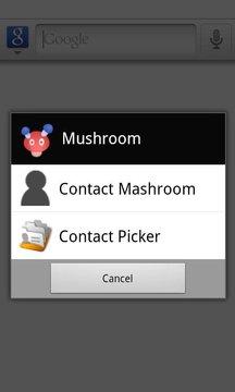 Contact Mashroom