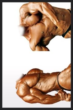 Face in a Bodybuilder