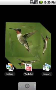 """蜂鸟""3D"