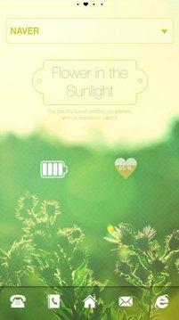 Sunlight dodol luancher theme