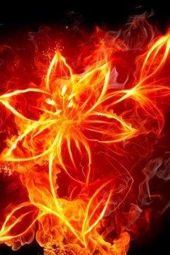 Burning Fire 3D Live Wallpaper