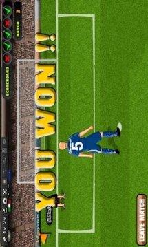 巴西足球世界杯2014