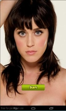 Katy Perry Beauty games