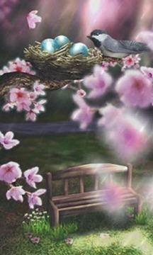Season Zen HD