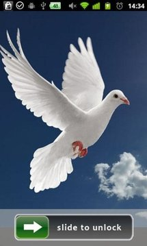 Peace Dove Lock Screen