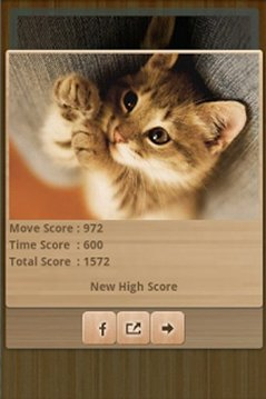 Funny Cats Puzzle & Wallpapers