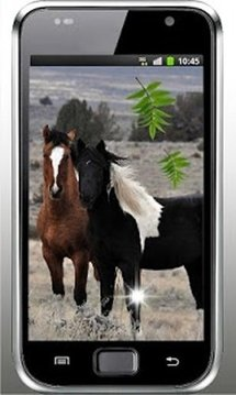 Horses Best HD live wallpaper