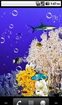 Top sea Live Wallpaper