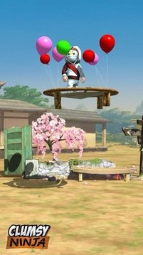 The White Clumsy Ninja