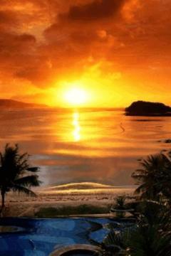 Amazing Beach at Sunrise Live
