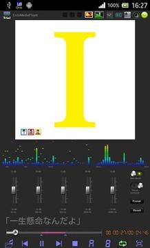 EndoMediaPlayer体験版