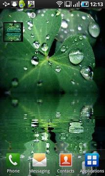 雨滴动态壁纸