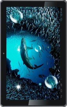 Underwater Danger Predator LWP