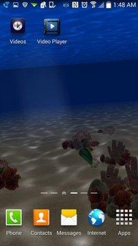 Exotic Ocean