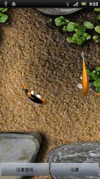 3D金鱼动态壁纸