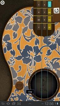 Ukulele Hawaiian Guitar - 四弦琴