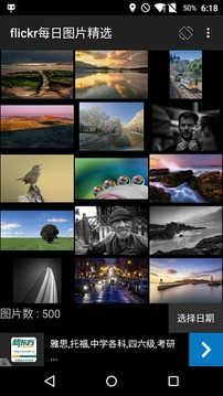 Flickr Daily Show