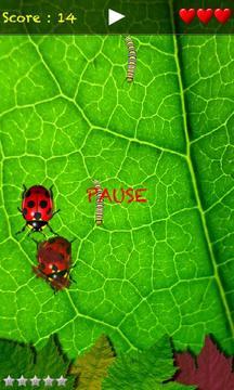 Crazy Bugs Lite
