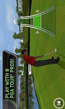 老虎伍兹巡回赛 Tiger Woods PGA Tour 12
