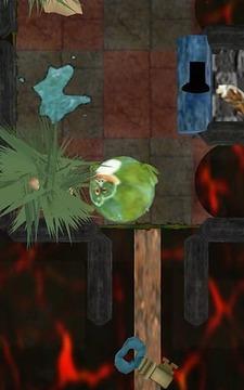 青蛙滚滚球(Freddy Budgett)