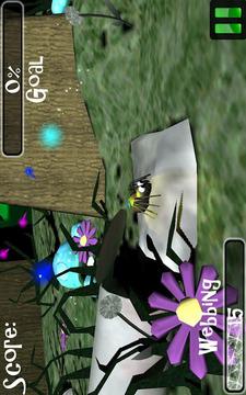 蜘蛛世界3D