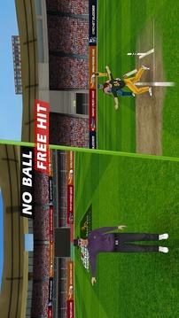 板球世锦赛