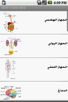 Arabic anatomy puzzles