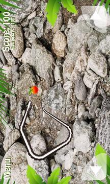 蛇自由的境界