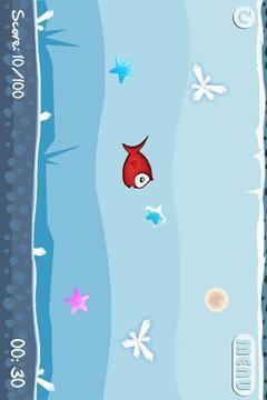 Kiki鱼