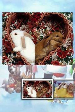 圣诞兔拼图 Christmas Bunny Puzzle