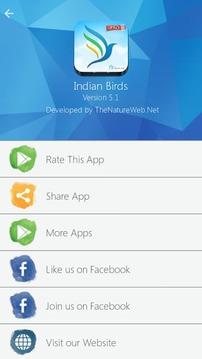 Birds Info - Indian Birds