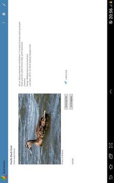 Australian Bird Checklist demo
