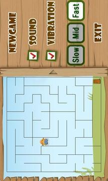 Maze Puzzle Deluxe