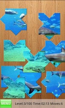 Yo Jigsaw Puzzle: Sharks