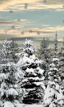 Winter Snow Trees 3D Trial LWP