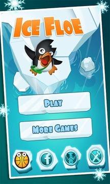 浮冰上的小企鹅