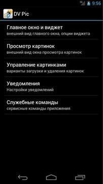 ДВПик