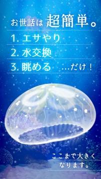 治愈的养成水母游戏