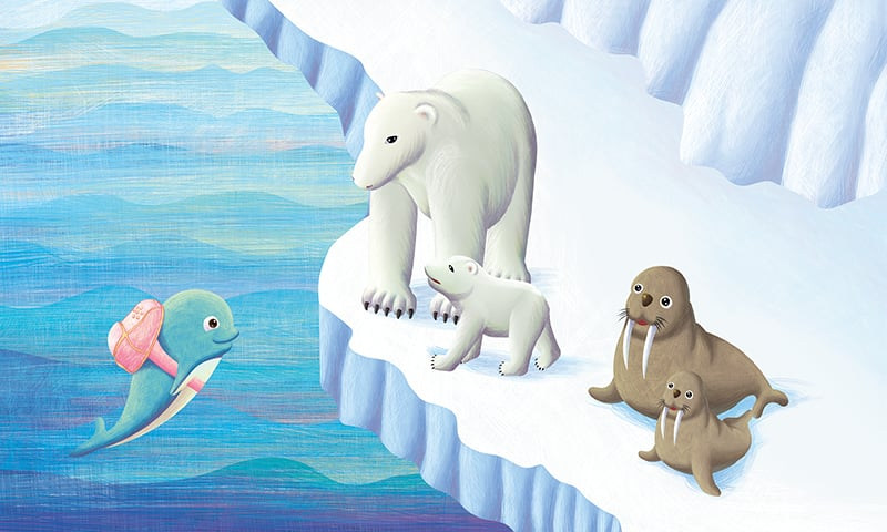彩铅海豚画步骤
